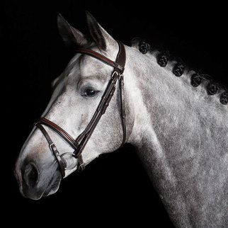 Greenfield Selection 717/Q1 - Bridle with flash noseband  - cow leather