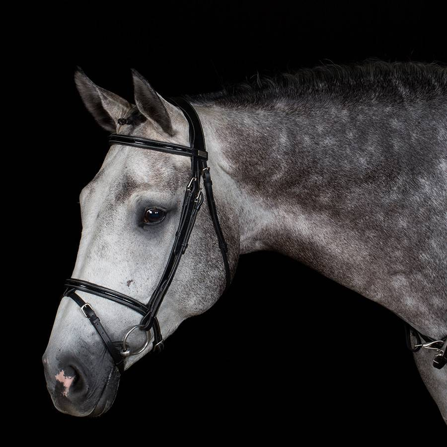 Greenfield Selection 717/Q2 - Bridle with flash noseband - calf leather excl. reins