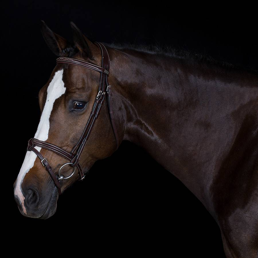 Greenfield Selection 719/Q1 - Bridle with detachable flash noseband - cow leather excl. reins