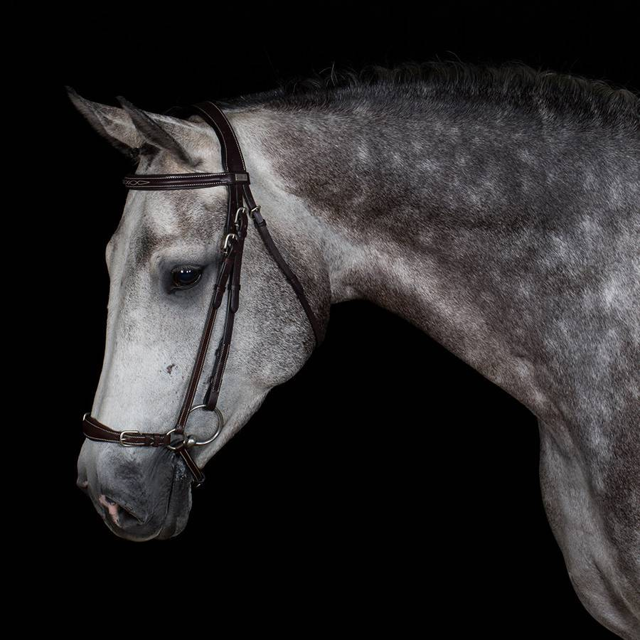 Greenfield Selection 720/Q1 - Bridle with dropped noseband - cow leather