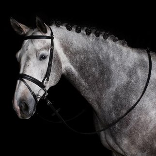 Greenfield Selection Training bridle