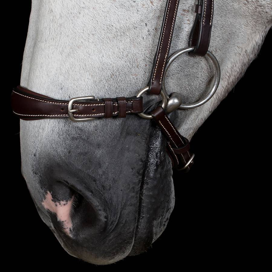 Greenfield Selection Drop noseband
