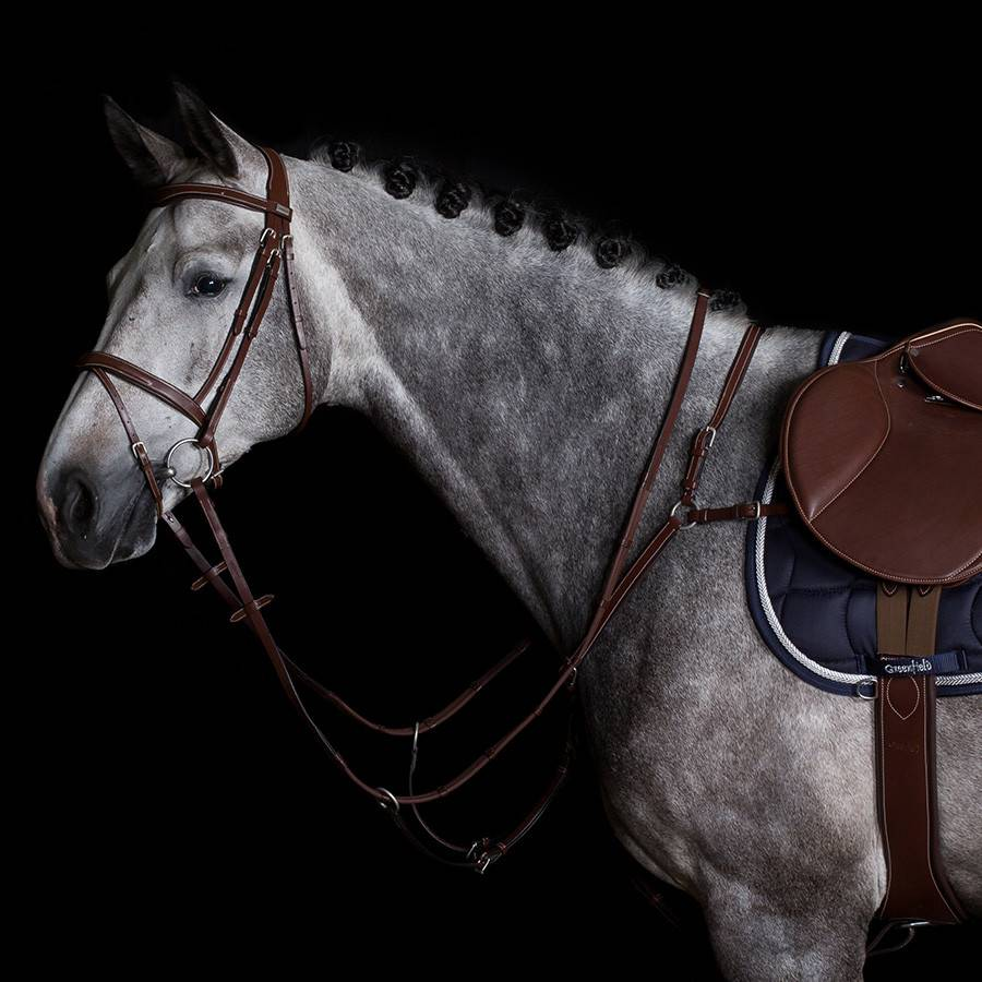 Greenfield Selection 61/Q2 Collier de chasse