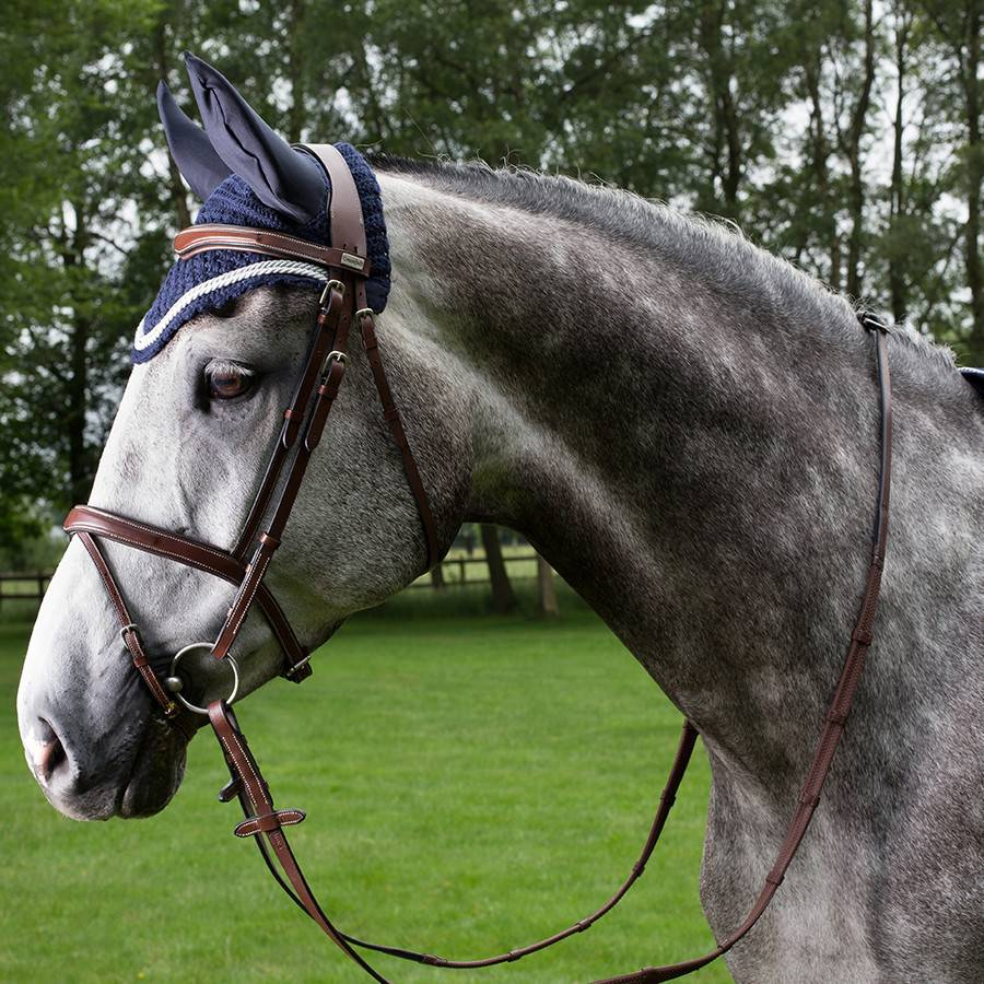 Greenfield Selection 770/Q1 - Bridle