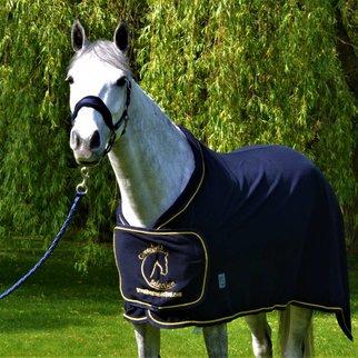 Greenfield Selection Fleece publiciteitsdeken - blauw/blauw-goud met GF logo