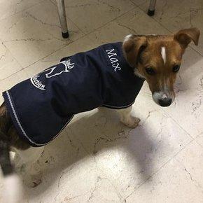 Borduren - Hondendeken