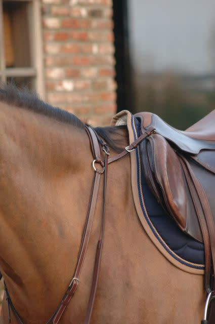 Greenfield Selection 69/Q2 - Breastplate