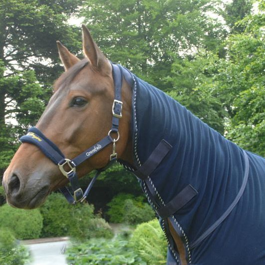 Greenfield Selection Fleece deken met hals - blauw/blauw-mix