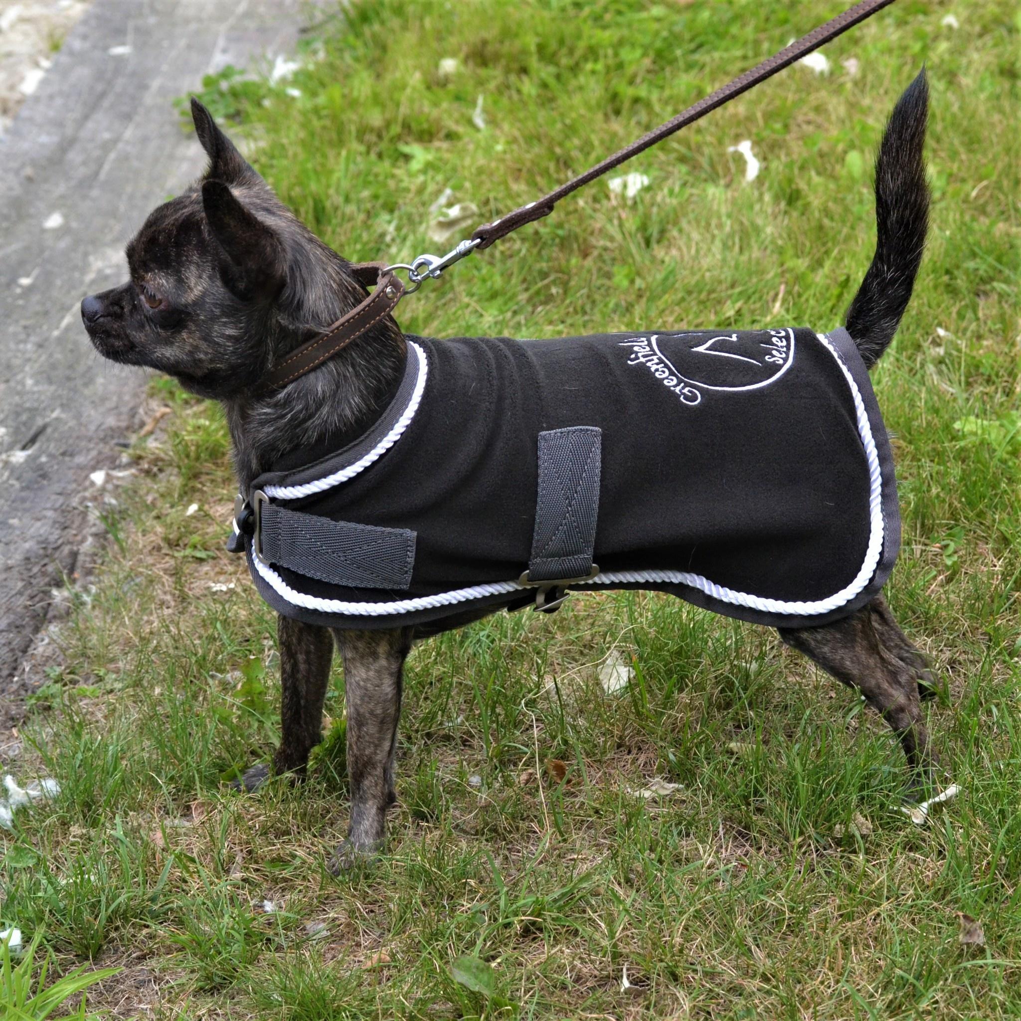 Greenfield Selection Manteau pour chien en polaire - gris