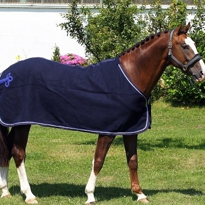 Greenfield Selection Wollen deken - blauw/blauw-wit/koningsblauw