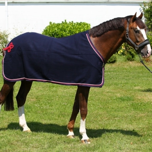 Greenfield Selection Woolen rug - navy/navy-white/red