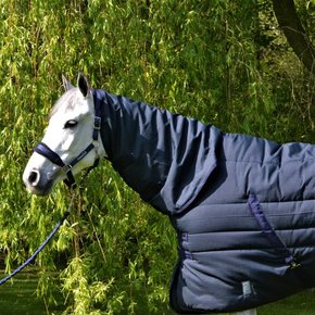 Stable rug 400 gram with fixed neckcover