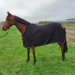 Fleece publicity rug - black/black-gold