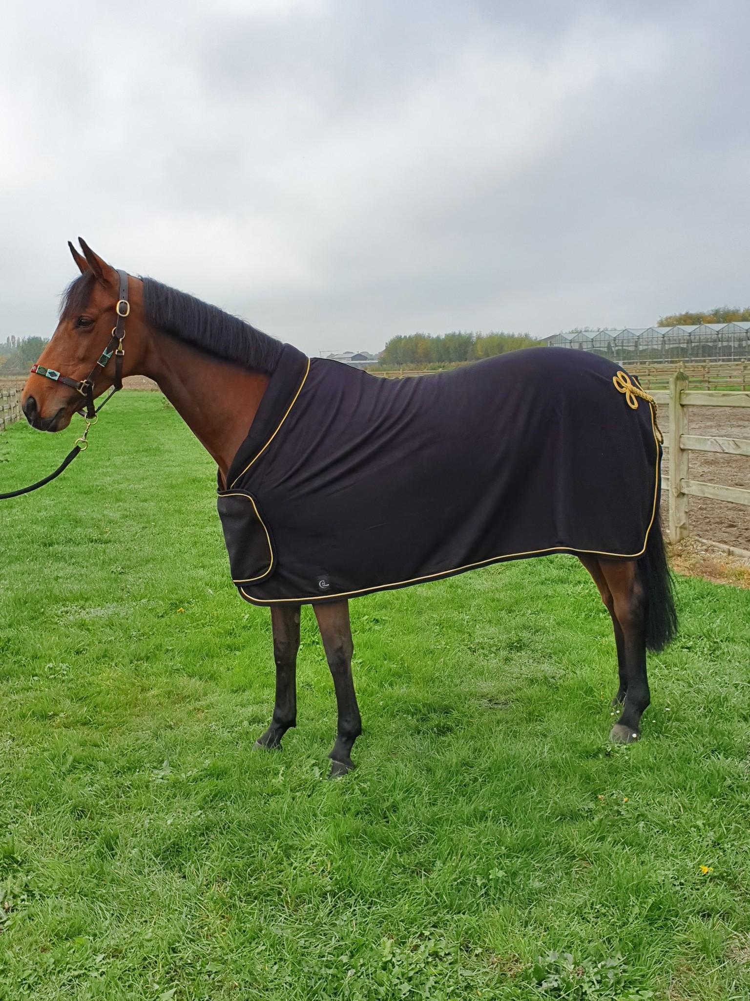 Greenfield Selection Fleece publicity rug - black/black-gold