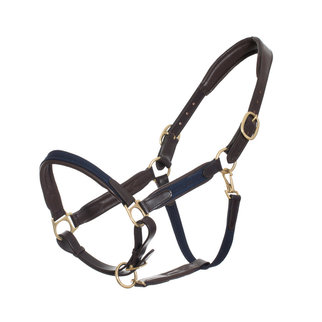 Greenfield Selection Poney leather headcollar with  fabric - navy