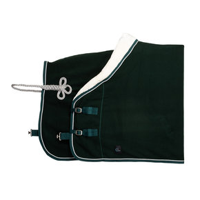Fleece teddy collar & silver cord - green