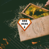 RÖMERTOPF BRICKNIC - VEGGIE CURRY - BBQ HERO