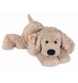 Hermann Teddy Slenker Hond