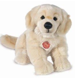 Hermann Teddy Hond Golden Retriever Zittend