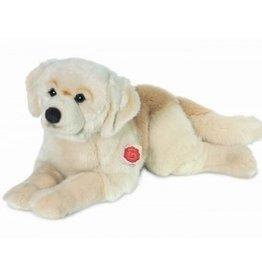 Hermann Teddy Hond Golden Retriever