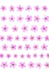 Djeco Muur Sticker Kersenbloesem