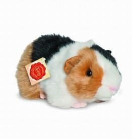 Hermann Teddy Cavia Tricolor
