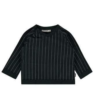 Imps&Elfs T-Shirt Long Sleeve green stripe