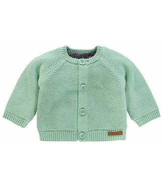 Noppies Baby Lou Grey Mint