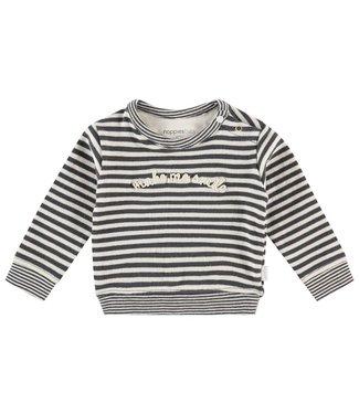Noppies Baby U Sweater ls Abirim Y/D str