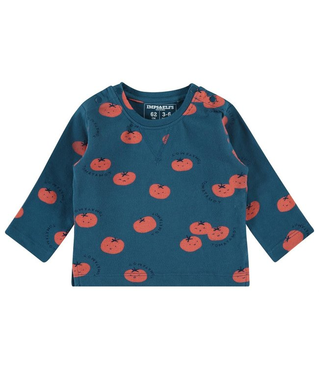 Imps&Elfs B Regular T-shirt ls Temba aop
