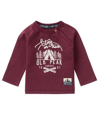 Noppies Baby B T-Shirt LS Elliot