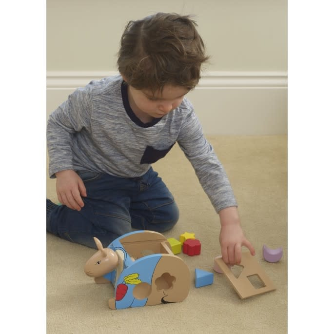 Boxed Peter Rabbit Shape Sorter