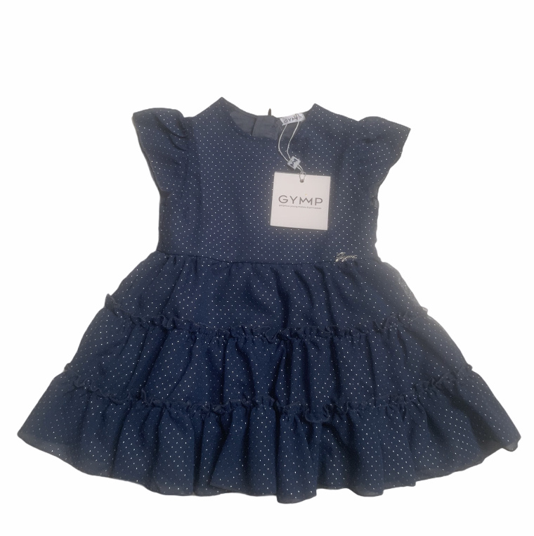 Gymp Gymp Navy Georgette Dress