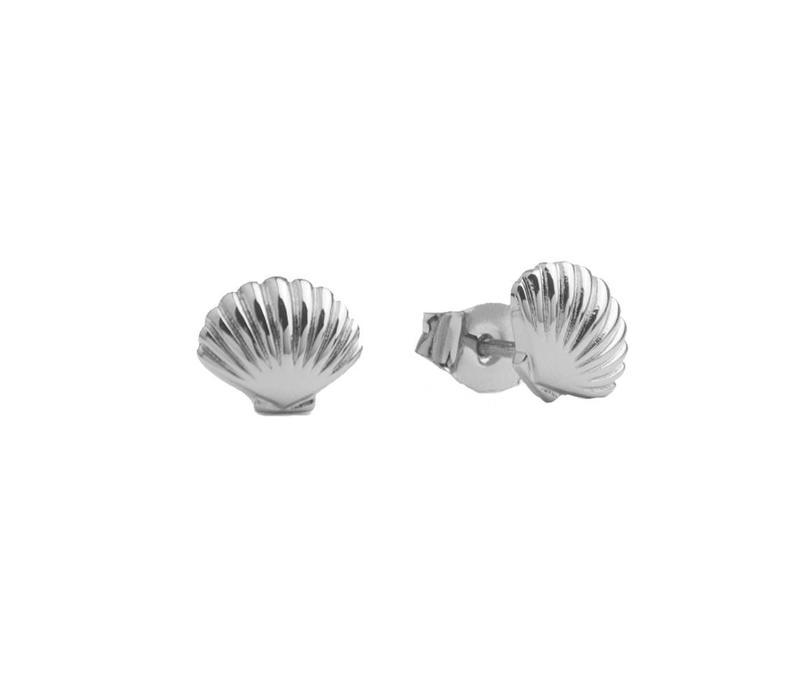 Oorbellen Zeeschelp zilver