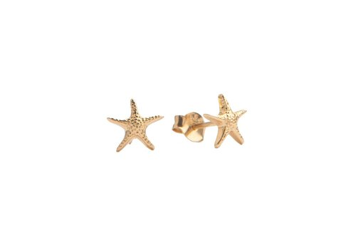 All the Luck in the World Parade Goldplated Earrings Starfish