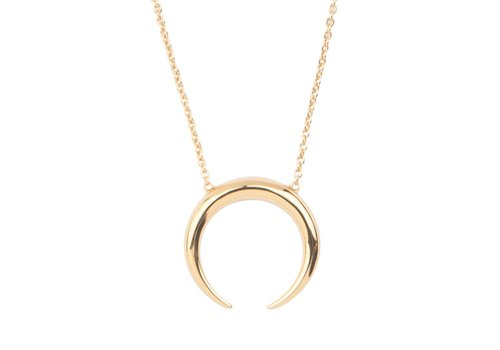 All the Luck in the World Necklace Horn gold