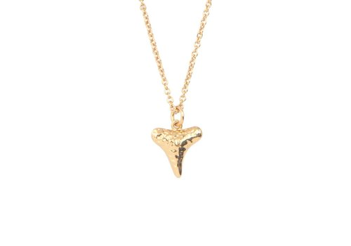 All the Luck in the World Necklace Tooth gold