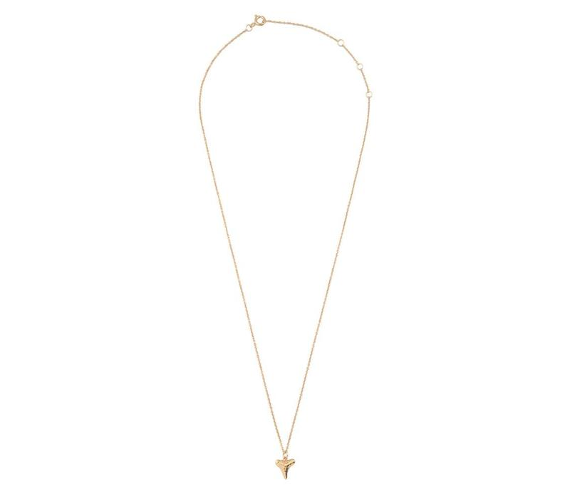 Necklace Tooth gold