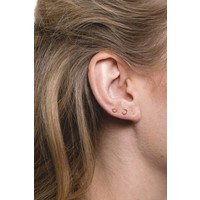 Earrings Oval gold