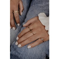 Ring Kolibrie 18K goud