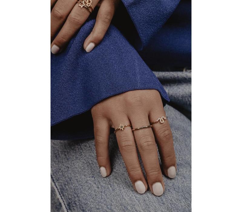 Ring Kleine Stippen Zwart verguld