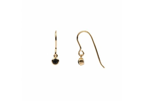 All the luck in the world Oorbel Hook Black Onyx 18k goud