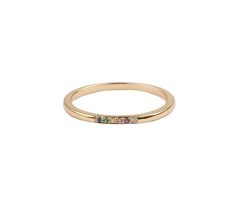 Ring Kleine Stippen Multi 18K goud