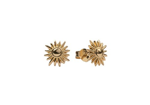 All the Luck in the World Parade Goldplated Earrings Sun