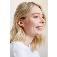 Earrings Rainbow gold