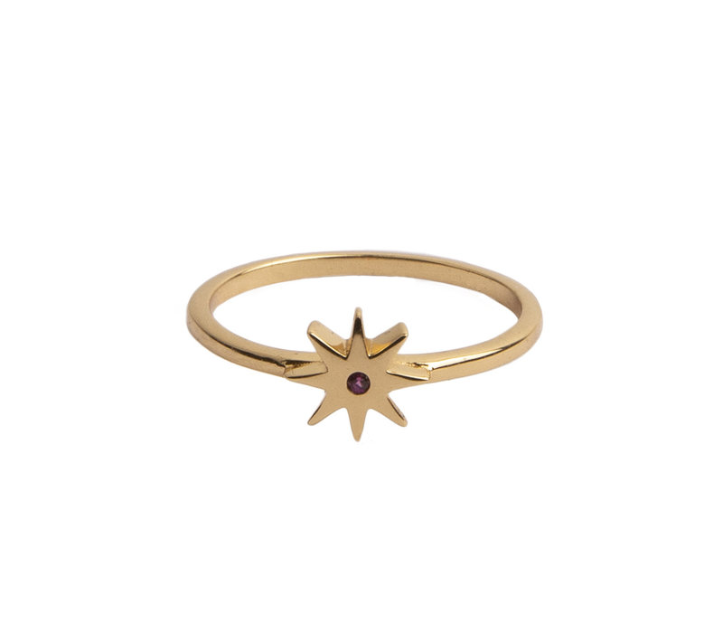 Magique Goldplated Ring Ster Roze