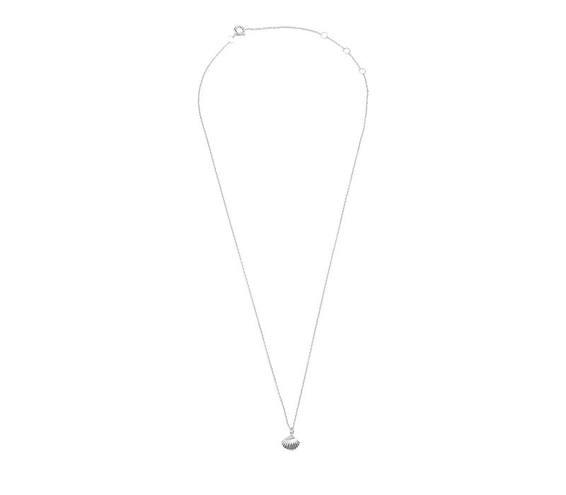 Necklace Sea Shell silver