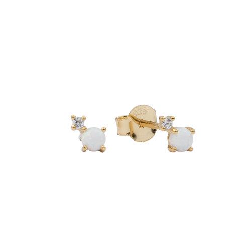 Oorbellen Twee Stippen opal wit transparant 18K goud