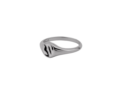 All the Luck in the World Vivid Silverplated Ring Signet Zebra Black White