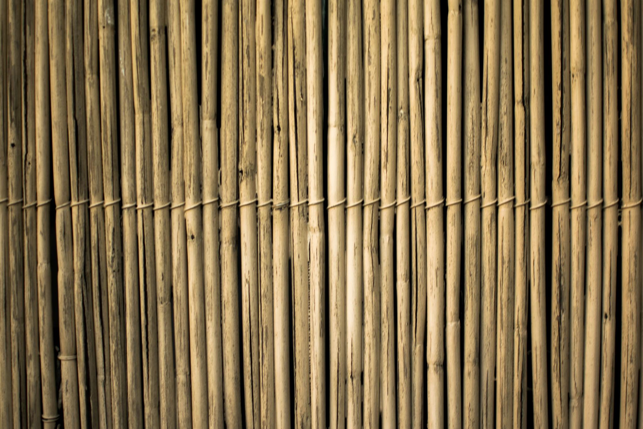 Beits en olie voor bamboe onderhoud